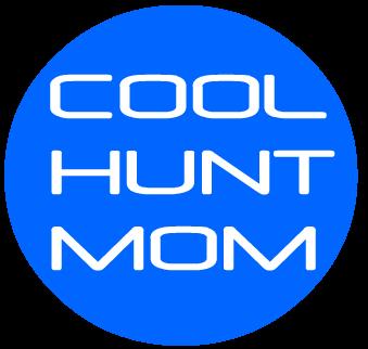 www.coolhuntmom.com